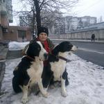 Мини-отель для животных в Киеве