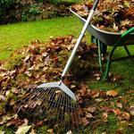 Уборка вашего двора