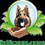 Дрессировка собак-Кинолог