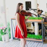 Скрипка на праздник