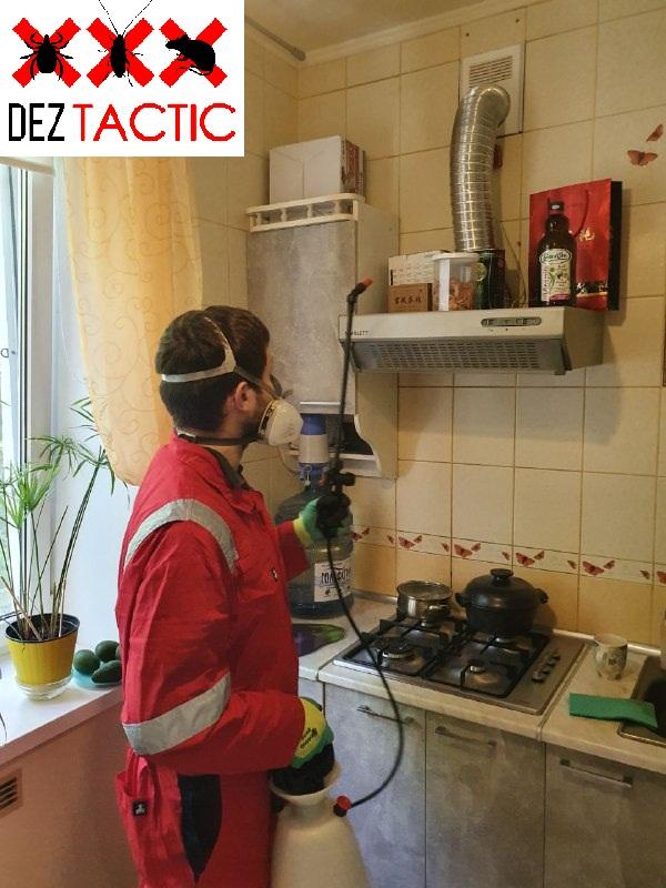 Фото DEZ Tactic: Профессиональное уничтожение насекомых 4