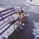Проффесиональная вело доставка