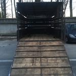 Вывоз строительного мусора, веток и т. д..