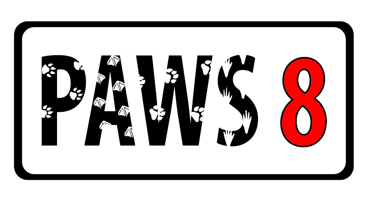 Фото Дизайн сайтов и логотипов 3