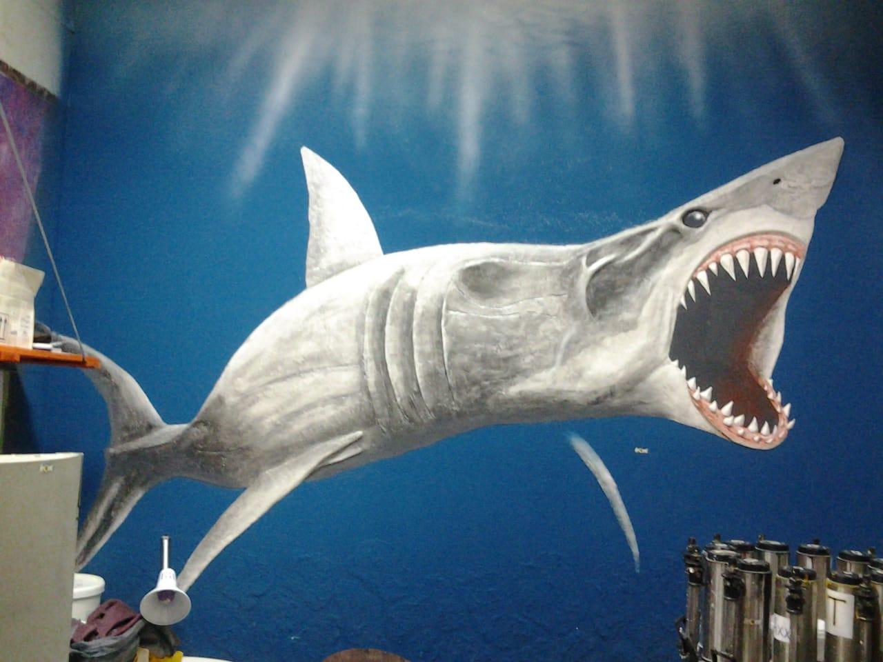 Фото Барельеф акула