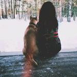 Выгул собак в Чернигове