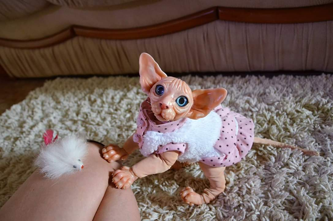 Фото Портретные куклы под заказ 3