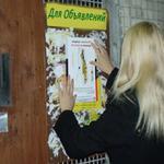 Расклейка объявлений в Киеве