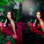 Художественная обработка, ретушь фотографии в Adobe Photoshop CC 2018, Adobe Lightroom Classic CC, Capture One 11