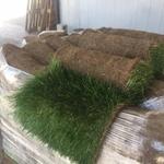 Газоны рулонные и сеяные Озеленение